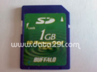 Buffalo RSDC-S1GB