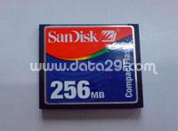 Sandisk SDCFB 256MB